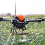 CPqD foca em Internet das Coisas e Inteligência Artificial para agronegócios